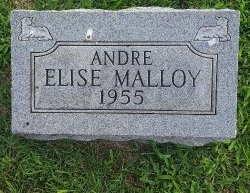 MALLOY, ANDRE ELISE - Union County, Kentucky | ANDRE ELISE MALLOY - Kentucky Gravestone Photos