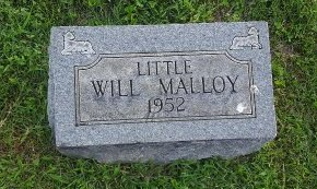 MALLOY, WILL - Union County, Kentucky | WILL MALLOY - Kentucky Gravestone Photos