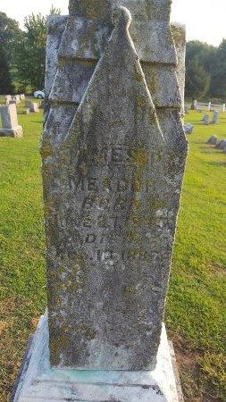MEADOR, JAMES P - Union County, Kentucky | JAMES P MEADOR - Kentucky Gravestone Photos
