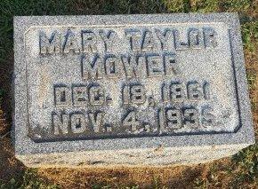 TAYLOR MOWER, MARY - Union County, Kentucky | MARY TAYLOR MOWER - Kentucky Gravestone Photos