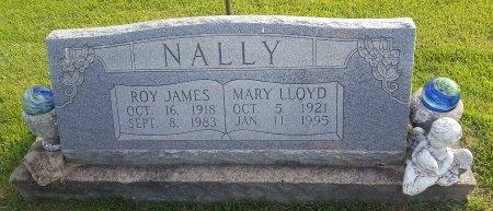 NALLY, MARY - Union County, Kentucky | MARY NALLY - Kentucky Gravestone Photos