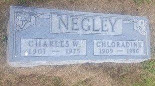 NEGLEY, CHARLES W - Union County, Kentucky | CHARLES W NEGLEY - Kentucky Gravestone Photos