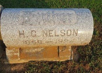 NELSON, H. G - Union County, Kentucky   H. G NELSON - Kentucky Gravestone Photos