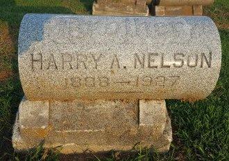 NELSON, HARRY A - Union County, Kentucky | HARRY A NELSON - Kentucky Gravestone Photos