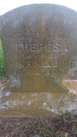 SPALDING, THERESA - Union County, Kentucky   THERESA SPALDING - Kentucky Gravestone Photos
