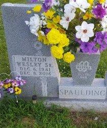 SPAULDING, MILTON WESLEY - Union County, Kentucky | MILTON WESLEY SPAULDING - Kentucky Gravestone Photos