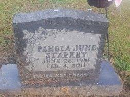 STARKEY, PAMELA JUNE - Union County, Kentucky | PAMELA JUNE STARKEY - Kentucky Gravestone Photos