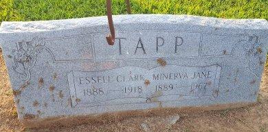 TAPP, MINERVA JANE - Union County, Kentucky | MINERVA JANE TAPP - Kentucky Gravestone Photos
