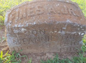 TAPP, FINES A JR - Union County, Kentucky | FINES A JR TAPP - Kentucky Gravestone Photos