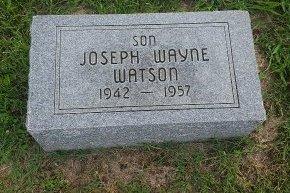 WATSON, JOSEPH WAYNE - Union County, Kentucky | JOSEPH WAYNE WATSON - Kentucky Gravestone Photos
