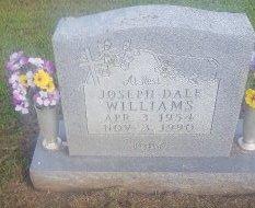 WILLIAMS, JOSPEH DALE - Union County, Kentucky | JOSPEH DALE WILLIAMS - Kentucky Gravestone Photos