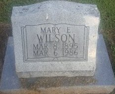WILSON, MARY E - Union County, Kentucky   MARY E WILSON - Kentucky Gravestone Photos