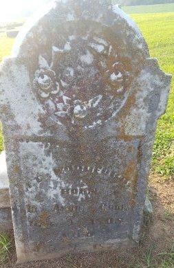 WOODFORD, A.D. - Union County, Kentucky | A.D. WOODFORD - Kentucky Gravestone Photos