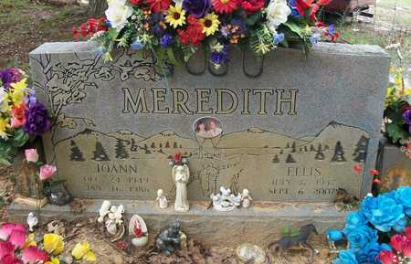 MEREDITH, JOANN - Wayne County, Kentucky   JOANN MEREDITH - Kentucky Gravestone Photos