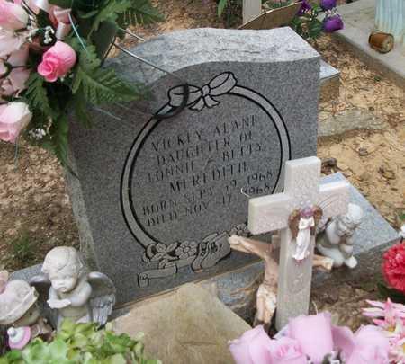 MEREDITH, VICKEY ALANE - Wayne County, Kentucky | VICKEY ALANE MEREDITH - Kentucky Gravestone Photos