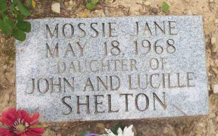SHELTON, MOSSIE JANE - Wayne County, Kentucky   MOSSIE JANE SHELTON - Kentucky Gravestone Photos